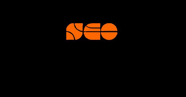 Cape Town SEO Logo